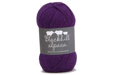 Blackhill Superfine Alpaca Asters 5090